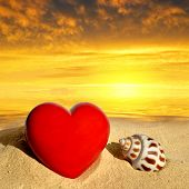 foto of conch  - Conch shell with heart on beach in the sunset - JPG