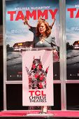 LOS ANGELES - JUL 2:  Susan Sarandon at the Melissa McCarthy Hand and Footprint Ceremony at the TCL