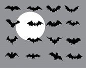 Bats Halloween Collection