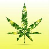 Abstract Cannabis Leaves