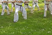 Taekwondo With Sticks