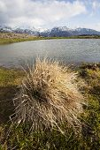 stock photo of velika  - View on a smal lake in Velika Planina plateau in Slovenia - JPG
