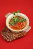 Russian ukraine cuisine - borsch dish on red background