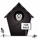 Birdhouse for sale