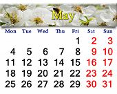 Calendar For May Of 2015 Year With Blooming Cherry