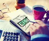 Management Information System MIS Data Development Information Concept