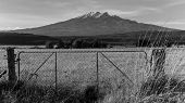 An old fence at Tongariro National Park, New Zealand