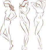 image of outline  - Beautiful female body outline silhouette drawing vector - JPG