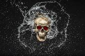 Skull Splash