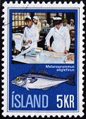 ICELAND - CIRCA 1975: A stamp printed in Iceland shows the fish melanogrammus aeglefius and women