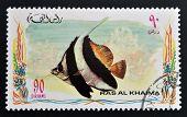RAS AL-KHAIMAH - CIRCA 2006: A stamp printed in Ras al-Khaimah shows a fish Heniochus acuminatus