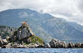 Petrovac and the church on the island