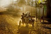OROMIA, ETHIOPIA-NOVEMBER 5, 2014: Unidentified children drive a horse cart in rural Ethiopia.