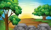Illustration of a forest view and sunset