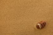 Beach sand with stone