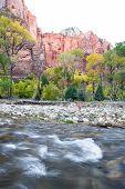 Autumn River Landscape