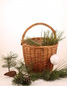 Still-life with a pine branch and a wattled basket