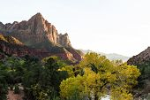 The Watchman At Zion