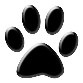 picture of dog tracks  - Cute  - JPG