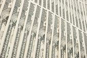 picture of twenty dollars  - Dollars background - JPG