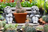 pic of cupid  - Twin cupid statue in the garden - JPG