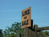 Logs For Sale Sign