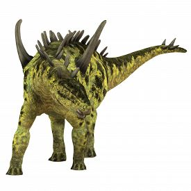 pic of herbivore  - Gigantspinosaurus was a herbivorous Stegosaur dinosaur that lived in the Jurassic Age of China - JPG