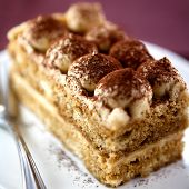 Close up of tiramisu cake