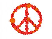 pic of woodstock  - peace symbol - JPG