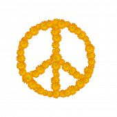 símbolo da paz, flores