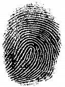 Fingerprint 7