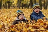 Autumn sibling -  6 years old child  and 2 years old baby boyl in autumn leaves in a park.