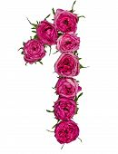 Arabic Numeral 1, One, From Red Flowers Of Rose, Isolated On White Background poster