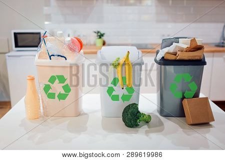 Waste Sorting At Home Protect