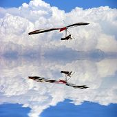 Hangglider And Cloud Reflections