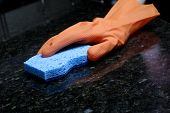 picture of cleaning service  - A person cleaning the Kitchen Counter with a glove