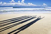 Close up of the shadows of five people with their arms in the air on the beach in late afternoon sun
