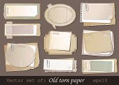 Vector set of old torn paper
