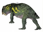 Lystrosaurus Dinosaur Tail 3d Illustration - Lystrosaurus Was A Dicynodont Therapsid Herbivore Dinos poster