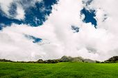 Lush Green Meadow Under Beautiful Sky. Green Meadow Under The Blue Skies. Beauty Nature Background.  poster