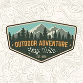 Stay Wild, Outdoor Adventure Patch. Vector Illustration. Concept For Shirt Or Print, Stamp Or Tee. V poster