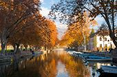 picture of annecy  - The canal in Annecy France ringed by the beautifully colored autumn leaves - JPG