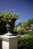 Flower Urn In Colonial Garden