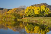 picture of winona  - Fall color trees and a reflective lake - JPG