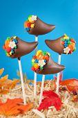 Cornucopia cake pops