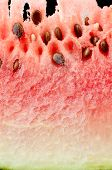 Fresh watermelon slice closeup