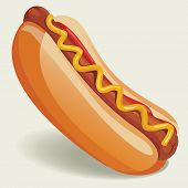 Vector Hot-Dog illustration