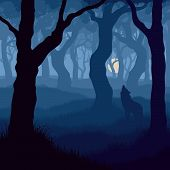 stock photo of wolf moon  - Vector illustration of wolf howling at moon in night forest - JPG