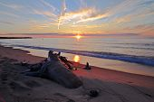 stock photo of driftwood  - Sunset reflection over the beach - JPG