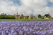 Small village Den Hoorn with white church at Dutch wadden island Texel